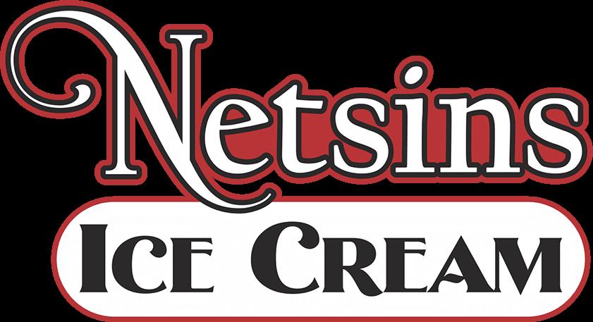 Netsins Logo